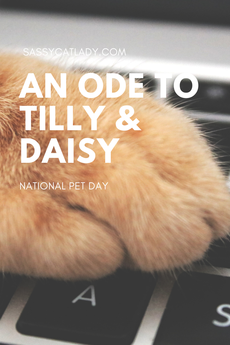 An Ode to Tilly & Daisy - Pinterest Graphic