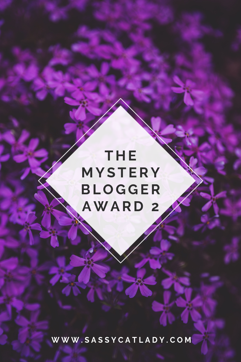 The Mystery Blogger Award 2
