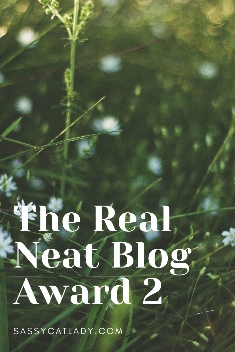 Real Neat Blog Award 2 Graphic