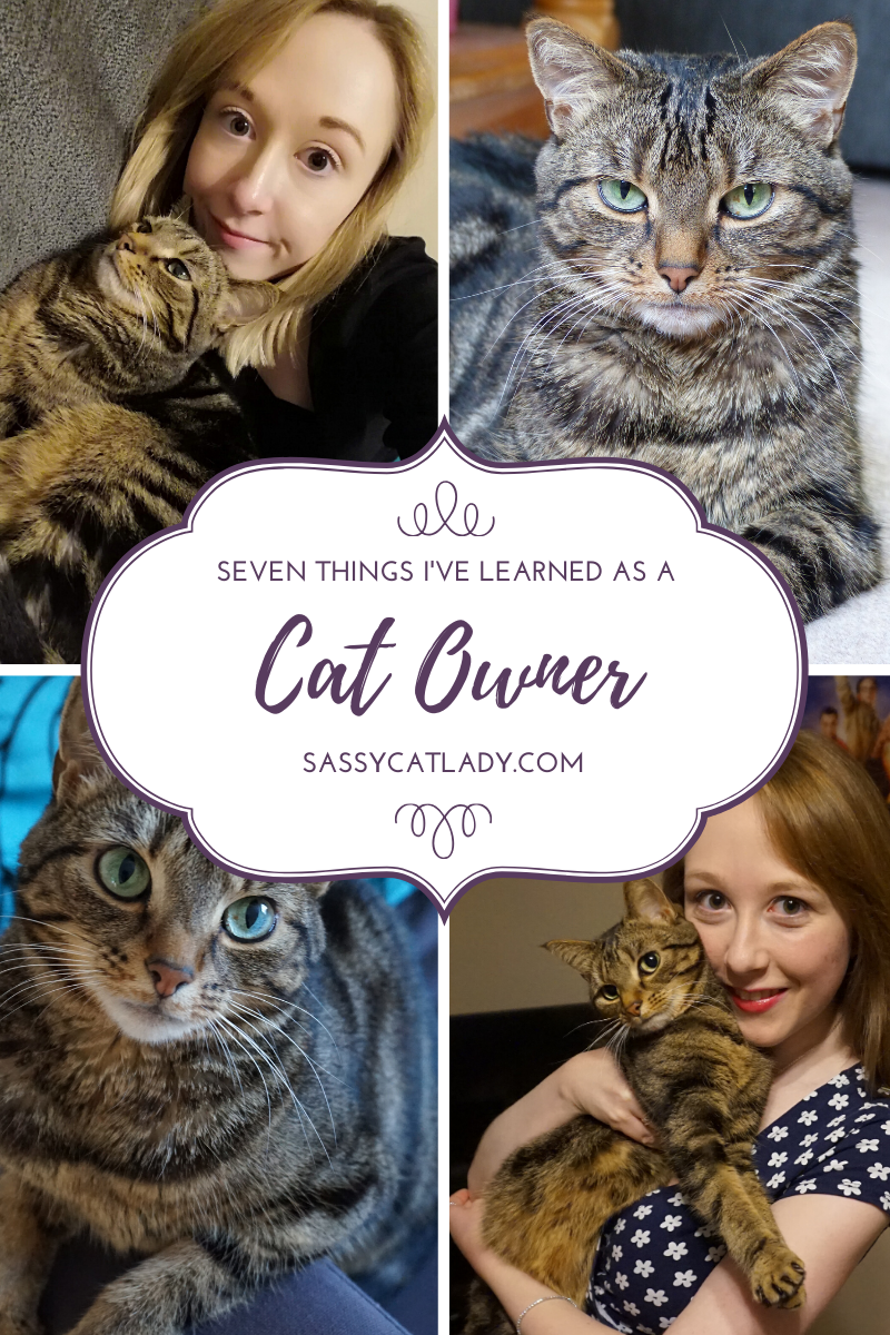 Seven Things I've Learned as a Cat Owner
