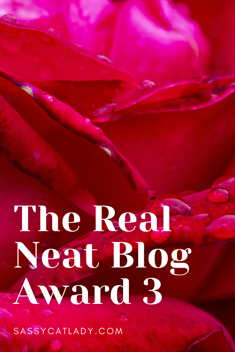The Real Neat Blog Award 3