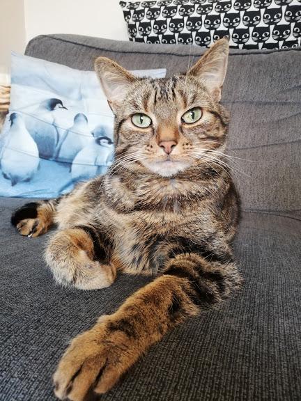 Tilly Posing
