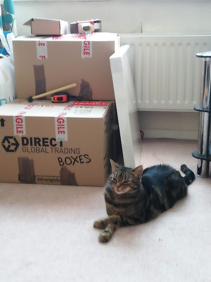 Tilly and Boxes