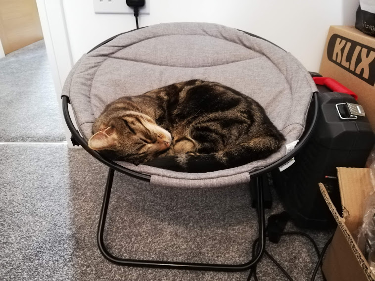 Tilly's New Chair