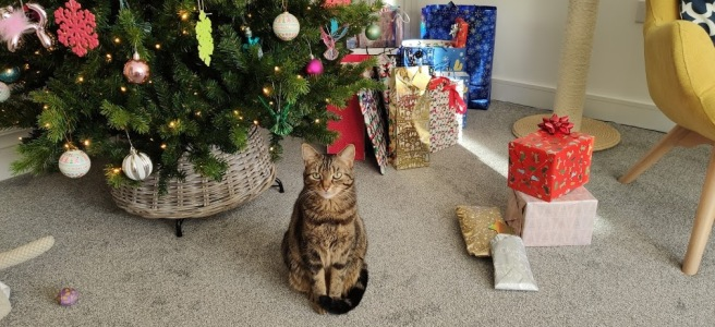 Tilly & Her Presents - Christmas 2020