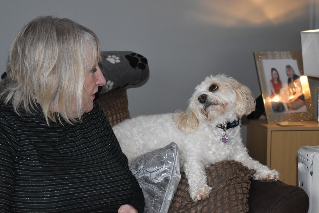 Photo of my Mum and Daisy. Daisy is lying on the arm of the sofa, looking directly at her, while my Mum looks back at her.