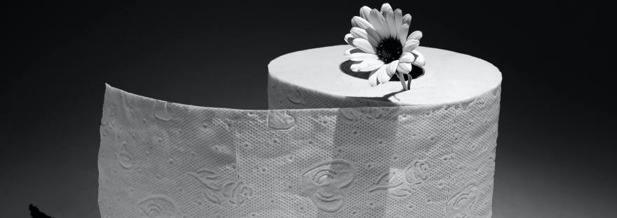 Toilet Paper with Flower