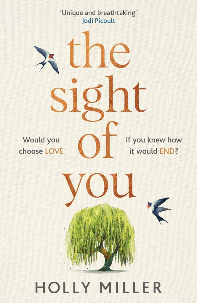 The Sight of You by Holly Miller - Book Cover